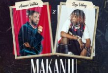 Photo of Annex Vodka ft. Seyi Vibez – Makanju