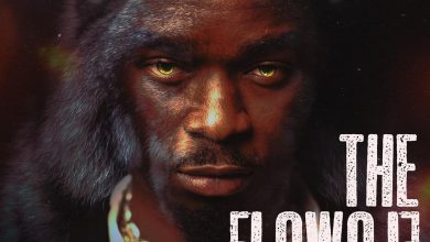Photo of The Flowolf ft. Dremo – My Other Pillow