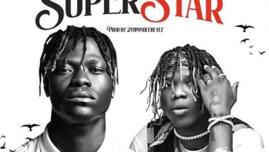 Photo of Mr Paradise ft. Seyi Vibez – Superstar ( Download Mp3 )